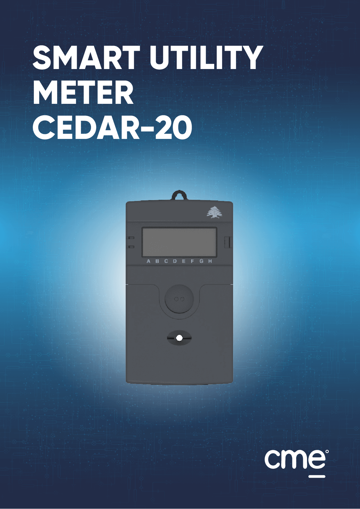 Smart utility Meter Cedar-20